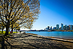 Panorama of trees along the waterfront, Stanley Park, Vancouver, B.C, Canada on a sunny day, early summer. The downtown skyline and some cruise ships under a clear blue sky.