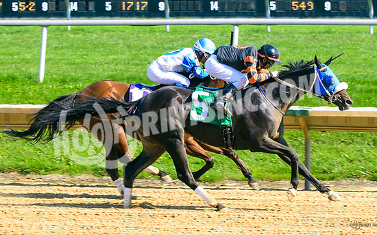 Ruth Less Blue winning at Delaware Park on 8/19/17