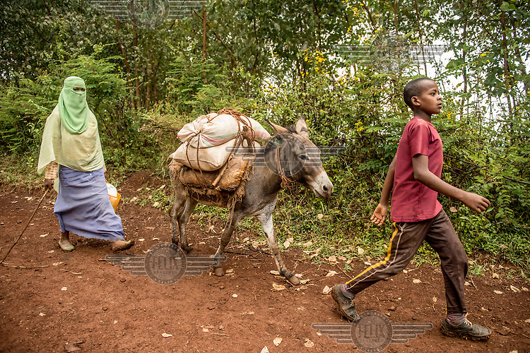 A woman and a boy, with a donkey, carry sacks of coffee to sell at market. /Felix Features