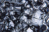 TABLE SALT CRYSTALS - NaCl,60x