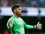 Ben Foster of West Bromwich Albion during the English Premier League match at the Etihad Stadium, Manchester. Picture date: May 16th 2017. Pic credit should read: Simon Bellis/Sportimage