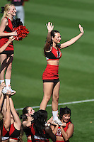 Tampa Spartans cheerleaders perform during an exhibition game against the Philadelphia Phillies on March 1, 2015 at Bright House Field in Clearwater, Florida.  Tampa defeated Philadelphia 6-2.  (Mike Janes/Four Seam Images)