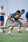 DEC 83-P7<br /> <br /> 8 Steve Young. Running in Practice.<br /> <br /> 1983<br /> <br /> Photo by Mark Philbrick/BYU<br /> <br /> © BYU PHOTO 2009<br /> All Rights Reserved<br /> photo@byu.edu  (801)422-7322