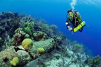 scuba diver hovers over broken mast of ship wreck Mairi Bahn, aka Windjammer, in shallow water, Bonaire, Netherlands Antilles, Caribbean, Atlantic, model release