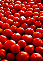 Bright red tomatoes for sale at the Charlotte Regional Farmers Market, one of five farmers markets owned by the state of North Carolina and operated by the NC Department of Agriculture and Consumer Services (NCDA&CS). The year-round market, located at 1801 Yorkmont Road, Charlotte, NC, sells everything from fresh produce to fresh pork and beef, ostrich, emu, baked goods, jams, jellies, crafts, plants and more.