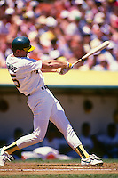 OAKLAND, CA - Mark McGwire of the Oakland Athletics in action during a game at the Oakland Coliseum in Oakland, California in 1987. Photo by Brad Mangin