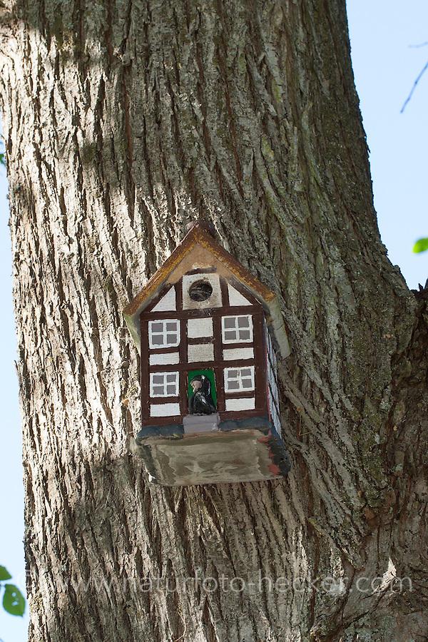 Nistkasten, Vogel-Nistkasten, Vogelnistkasten, Meisenkasten, Nisthilfe, Vogelkasten, nestingbox, nesting box, nest box, nest-box, birdhouse