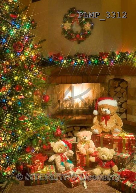 Marek, CHRISTMAS ANIMALS, WEIHNACHTEN TIERE, NAVIDAD ANIMALES, teddies, photos+++++,PLMP3312,#Xa# under Christmas tree,