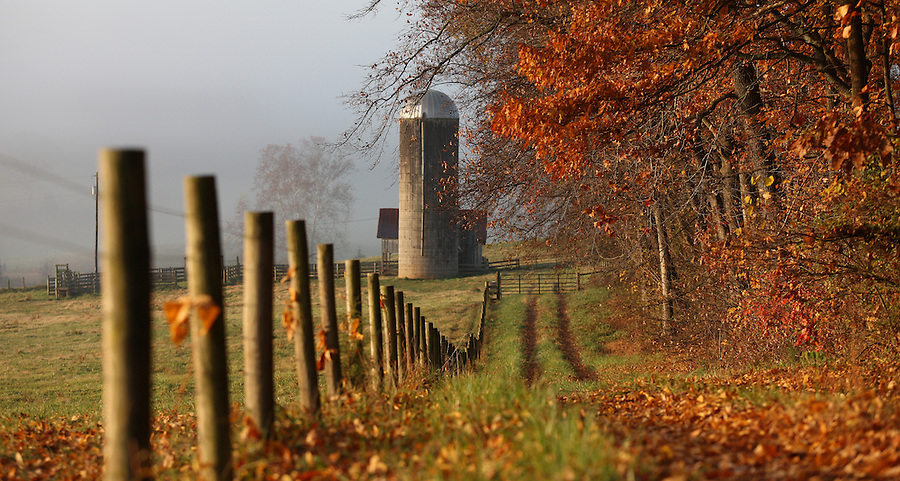 Rural country roads lead to local farmlands in Albemarle County. Photo/ Andrew Shurtleff