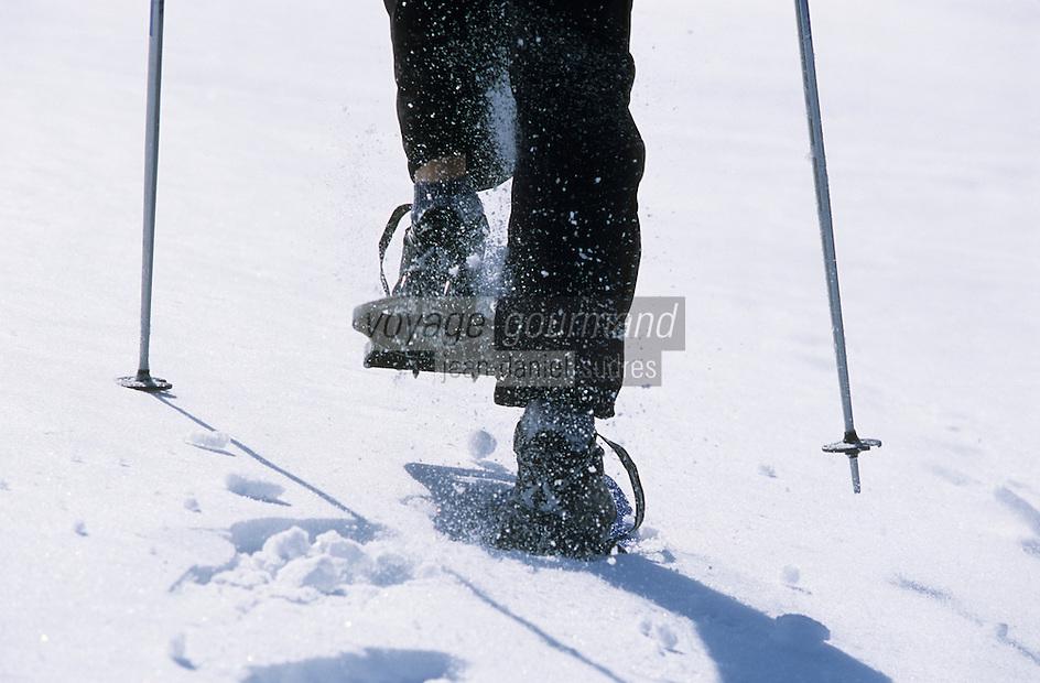 Europe/France/Rhône-Alpes/74/Haute-Savoie/Megève: Montée en raquettes au domaine de la Sasse