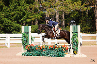 Equestrian Festival, August 2-4, 2019