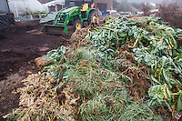 Green waste becoming compost, Singing Frogs Farm