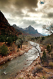 USA, Utah, Springdale, Zion National Park, the North Fork of the Virgin River with The Watchman mountain in the distance