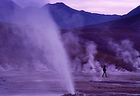 El Tatio geysers north of San Pedro at 4300 meters above sea level in the Andes Mountains in the Atacama desert. The world's highest geyser field has over 80 active geysers with a steaming field of boiling water that spews and sprays at sunrise leaving white mineral deposits.