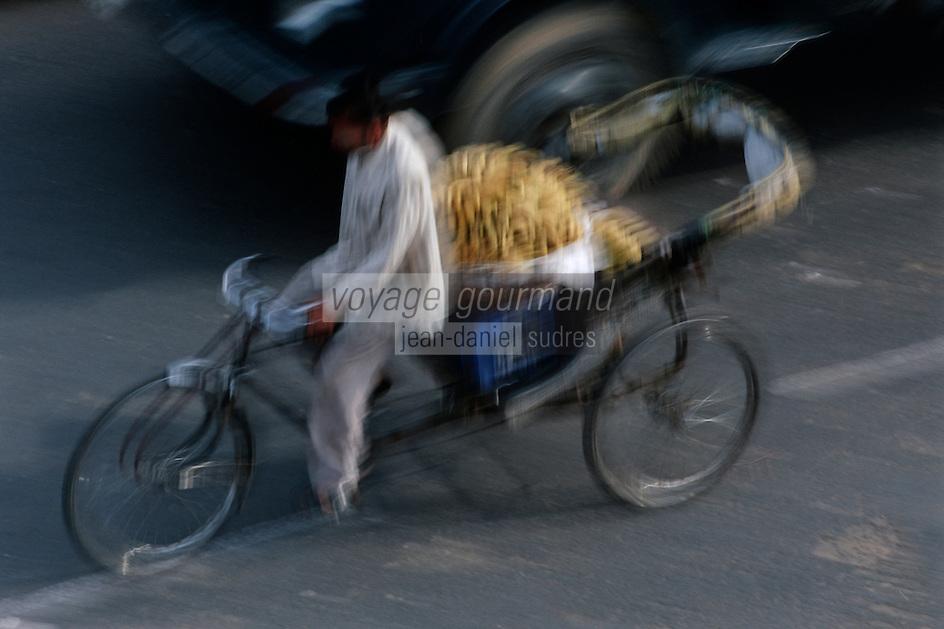 Asie/Inde/Rajasthan/Jaipur: Rickshaw chargé de bananes se rendant au marché prés porte Tripolia