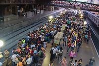 SÃO PAULO, SP, 12.11.2015- TRANSPORTE-SP - Movimentação na estação Luz da CPTP nesta quinta-feira, 12 . (Foto: Renato Mendes / Brazil Photo Press)