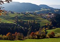 Italien, Suedtirol, Hafling: Wandergebiet oberhalb Merans   Italy, South Tyrol, Alto Adige, Avelengo: hinking area above Merano