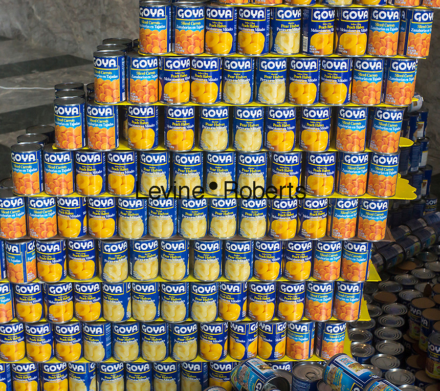 Detail of Goya brand canned fruit and vegetables. Architects, engineers, students and designers from architecture and construction firms around the city participate in the 20th Canstruction Design Competition in New York, seen on Sunday, February 3, 2013, on display in the World Financial Center. The participants design and build giant structures made from cans of food which will be donated to City Harvest at the close of the exhibit. Over 100,000 cans of food were collected and will be used to feed the needy at food pantries around the city and over 100 cities host a competition. (© Richard B. Levine)