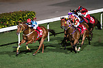Jockey #12 Dylan Mo Hin-tung riding Ocean Roar (L) leading the race 6 during Hong Kong Racing at Happy Valley Race Course on December 06, 2017 in Hong Kong, Hong Kong. Photo by Marcio Rodrigo Machado / Power Sport Images