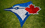 6 March 2019: A Toronto Blue Jays Logo is painted in the grass behind home plate shown prior to a Spring Training game against the Philadelphia Phillies at Dunedin Stadium in Dunedin, Florida. The Blue Jays defeated the Phillies 9-7 in Grapefruit League play. Mandatory Credit: Ed Wolfstein Photo *** RAW (NEF) Image File Available ***