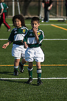 Pleasanton Cavaliers U8 Action 2013. (Photo by /AGP Photography)