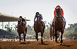 ARCADIA CA - JUNE 04: Beholder #2, with jockey Stevens aboard defeats Stellar Wind #1 with Victor Espinoza and  Finest City #7 with Tyler Baze to win the Vanity Mile at Santa Anita Park on June 4, 2016 in Arcadia, California. (Photo by Alex Evers/Eclipse Sportswire/Getty Images)