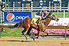 Never Gone South winning The Strike Your Colors Stakes at Delaware Park on 8/5/15