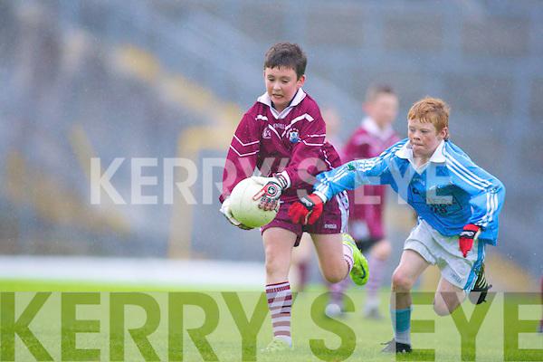 Cian O'Callaghan Firies Brendan Healy Scartaglen