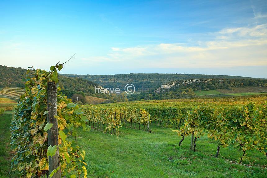France, Côte d'Or (21), Baubigny, vignoble Hautes-Côtes de Beaune à Evelle en automne // France, Cote d'Or, Baubigny, Hautes Cote de Beaune vineyard to Evelle in autumn