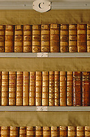 Rows of gilt leather-bound volumes on the shelves of the library