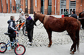 "Dublin, Ireland, January 2, 2011:.Boy and his horse during the Smithfield horse market in central Dublin. This traditional market has now become a place for the young boys from poor northern neighborhoods of the city trade the horses, selling them for as little as 80 Euros, mistreating them and roaming on them up and down the slippery square..Since the beginning of crisis, between 10 and 20 thousand horses have become homeless or went in the hands of the youths in urban areas. Lots of Irish people who used to buy horses for fun during the boom years of ""Celtic Tiger"", now are abandoning them faced with expenditure of 35 Euro a week to properly maintain a horse. This animal previously worth 2000 Euro now can be purchased for as little as 80 Euro. New owners keep their horses in city greens, city ruins, or their house gardens, in very bad conditions. Most do not get much food, many are starving, dying, being mistreated..(Photo by Piotr Malecki / Napo Images)..Dublin, Irlandia, 2/01/2011:.Chlopak jego kon podczas comiesiecznego targu koni w Smithfield w centrum Dublina..Ten tradycyjny targ  stal sie miejscem gdzie mlodzi chlopcy z biednych polnocnych dzielnic miasta handluja konmi po 80 euro, zle je traktujac i szalejac na nich po calym placu. .Od poczatku kryzysu od 10 do 20 tysiecy koni zostalo wyrzuconych na ulice przez wlascicieli nie chcacych placic okolo 35 Euro/tydzien za ich utrzymanie. Wpadaja one czesto w rece mlodziezy z ubogich dzielnic miasta, ktora handluje nimi, bije, glodzi, trzyma w skrajnie trudnych warunkach, w przydomowych ogrodkach lub ruinach budynkow i szaleje na nich po miescie. Kon, ktory byl wart 2000 Euro teraz moze byc kupiony za 80. .Fot: Piotr Malecki / Napo Images."