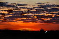 ATENCAO EDITOR: FOTO EMBARGADA PARA VEICULOS INTERNACIONAIS - BRASILIA, DF, 08 SETEMBRO 2012 - AMANHECER BRASILIA -Amanhecer na capital federal neste sabado. FOTO: VANESSA CARVALHO - BRAZIL PHOTO PRESS.