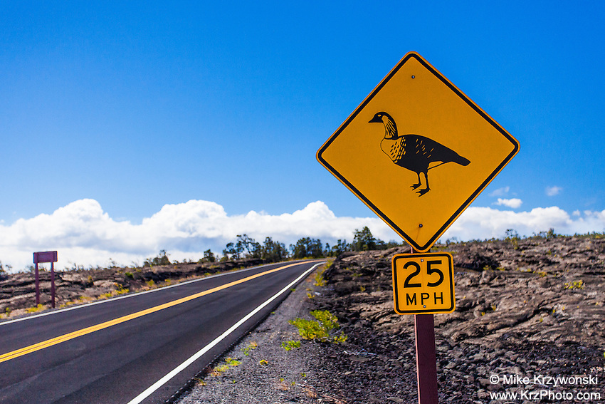 Nene crossing sign along Chain of Craters Road in Hawaii Volcanoes National Park, Big Island, Hawaii