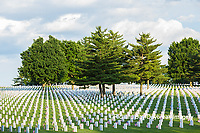 65095-01806 Flags on Memorial Day at Jefferson Barracks National Cemetery, St Louis, MO