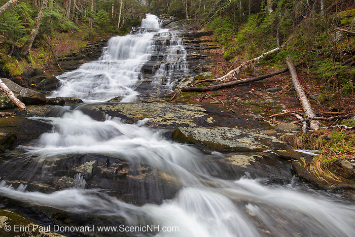Beaver Brook Cascades on Beaver Brook in Kinsman Notch of the New Hampshire White Mountains on a rainy spring day. The Appalachian Tail passes by these cascades.