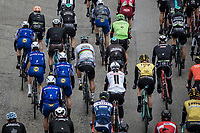 World Champion Peter Sagan (SVK/Bora Hansgrohe) hidden in the peloton. <br /> <br /> Binckbank Tour 2017 (UCI World Tour)<br /> Stage 4: Lanaken &gt; Lanaken (BEL) 155km