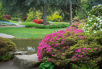 Seattle Washington:<br /> Kubota Garden, spring in the Tom Kubota stroll garden