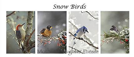Snow birds card set