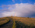 Little Bighorn Battlefield National Monument, MT<br /> Summer clouds and rainbow over memorial stones on Custer Hill