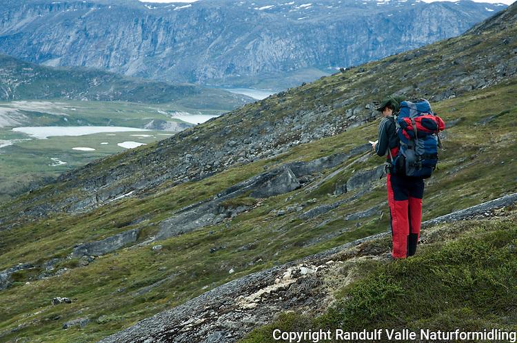 Jente studerer kart på fottur ---- Girl looking at map while hiking