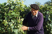 Europe/France/Aquitaine/50/Landes/Villeneuve-de-Marsan : Mr Faget viticulteur-tonnelier [Non destiné à un usage publicitaire - Not intended for an advertising use]<br /> PHOTO D'ARCHIVES // ARCHIVAL IMAGES<br /> FRANCE 1990