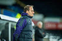 Dave Adams looks on during the  EFL Checkatrade Trophy match between Swansea City FC and Plymouth Argyle FC at The Liberty Stadium, Swansea, Wales, UK. 08 November 2016