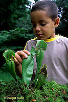 CA18-042z  Pitcher Plant - boy examining plant
