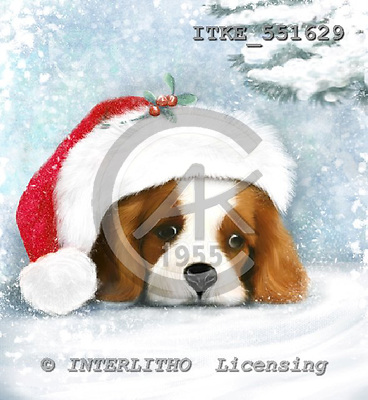 Isabella, CHRISTMAS ANIMALS, paintings, ITKE551629,#xa# Weihnachten, Navidad, illustrations, pinturas