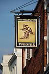 The Wellington pub, Portsmouth, Hampshire, England