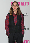 Andrew Lutheran arriving at the Los Angeles Premiere of Palo Alto, held at Directors Guild of America May 5, 2014.