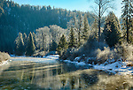 Idaho, North, Shoshone County, Idaho Panhandle National Forest. The Coeur d'Alene River reflects the golden morning light and green pine trees on a cold frosty winter day.