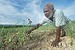 Jean Jean Rony weeds his field of leeks in the Haitian community of Ganthier with help from his nephew Djerry Jean in the background. They received seeds and other assistance from Servicio Social de las Iglesis Dominicanas, a member of the ACT Alliance, after their community was devastated in 2016 by Hurricane Matthew. With SSID's help, residents are rebuilding their lives.