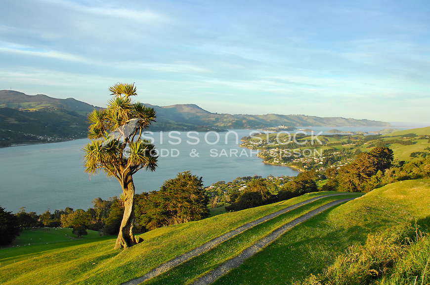 Looking down Otago Harbour towards Port Chalmers from Claremont Farm high on the Otago Peninsula