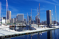 Baltimore, Maryland, Inner Harbor, Downtown Skyline